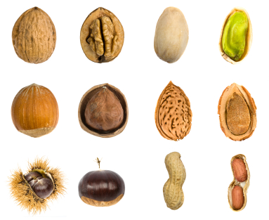 various nuts in shells