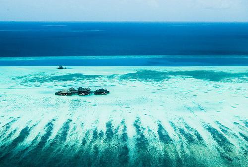 The Maldives sink
