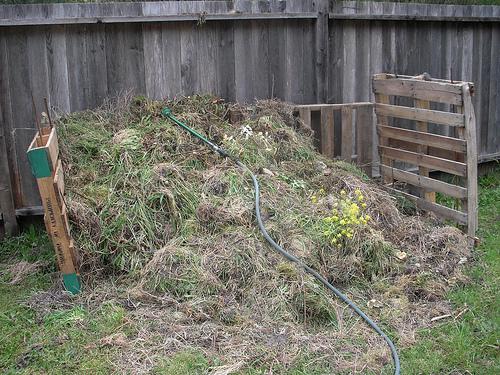 a garden compost pile