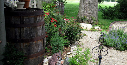 Rainwater collection laws vary by state
