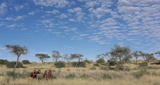 Bushmen in Africa