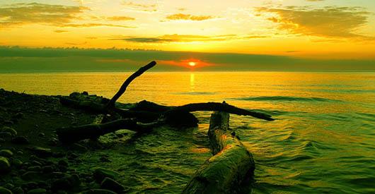 Lake Michigan threatened by invasion of Asian carp.