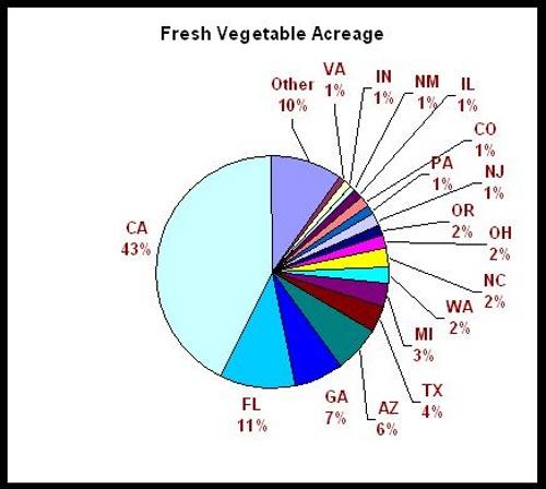 Where US Fresh Vegetables are Grown
