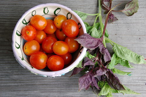 basil and tomatoes