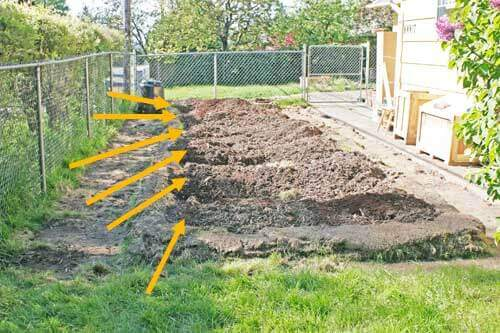 Mounded Raised Beds