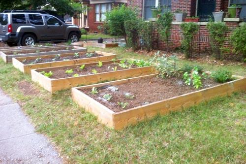 Front Yard Vegetable Garden Design Windowsunity