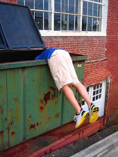 an urban lumberjack dumpster diving