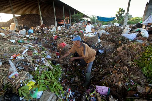 People from Java island working in a scavenging at the dump on April 11, 2012 on Bali, Indonesia. Bali daily produced 10,000 cubic meters of waste.