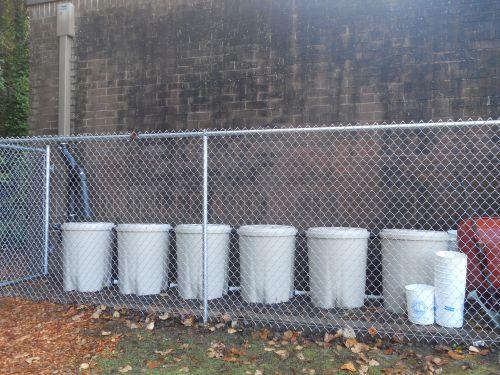 Rainwater Harvesting at a Local School