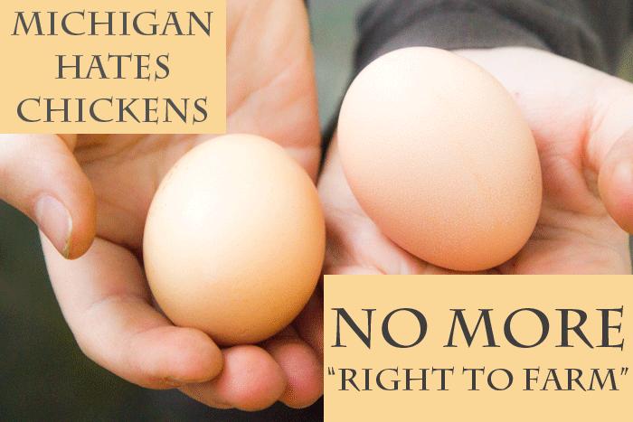 Michigan Hates Chickens
