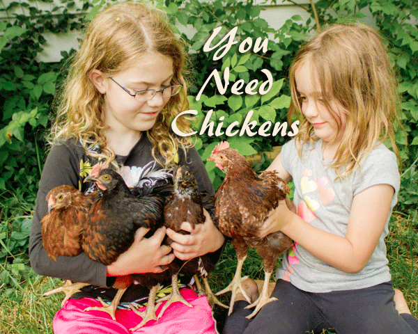 You Need Chickens