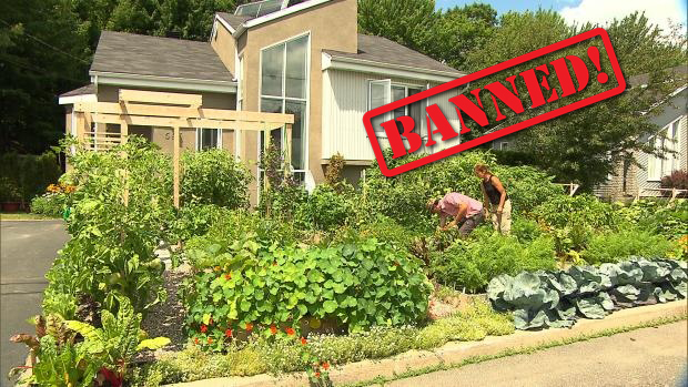families getting banned for growing gardens