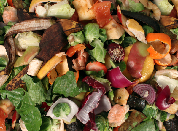 8 Ways To Reduce Holiday Food Waste