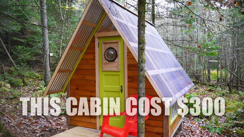 Exceptionnel $300 Tiny House, Cabin
