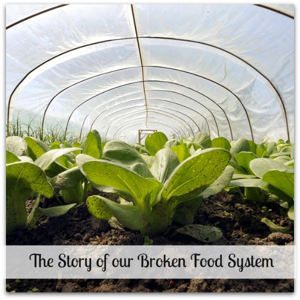 How to build a better food system