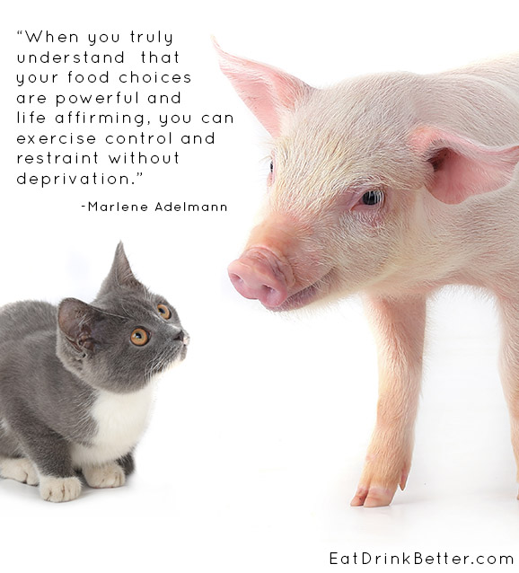 What makes it okay for us to eat one species and love another?