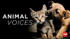 animal-voices-documentary