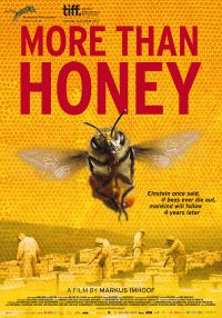 more-than-honey-documentary
