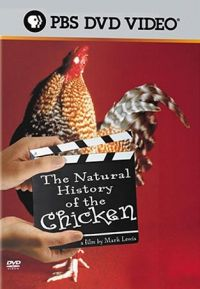 natural-history-of-the-chicken-documentary