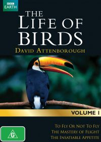 the-life-of-birds-documentary