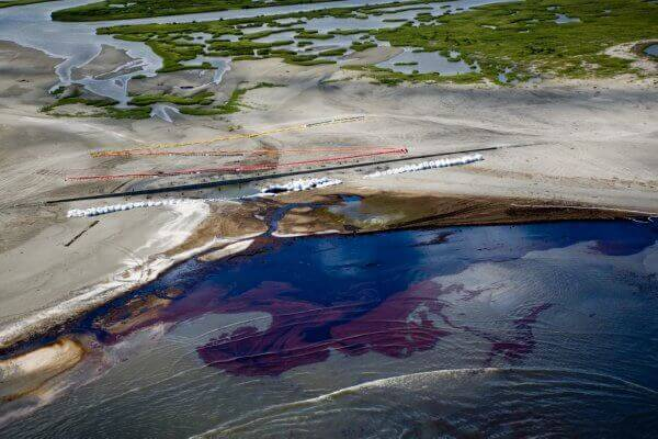 louisiana coast bp oil spill