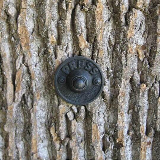 bark shingles