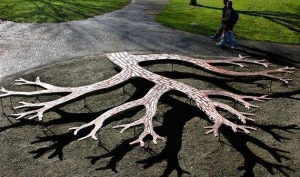 tree branch bench