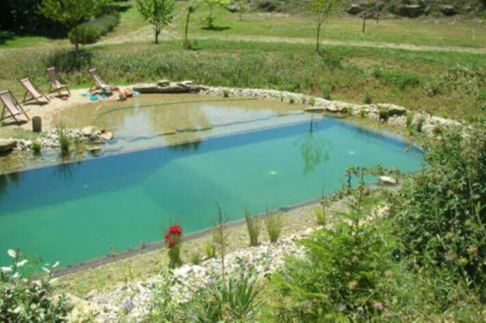 Natural pools or swimming ponds insteading for Koi swimming pool