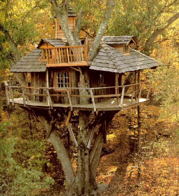 Tree Houses From The Past Into The Future Insteading