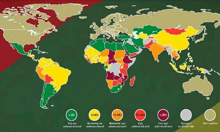 world hunger map