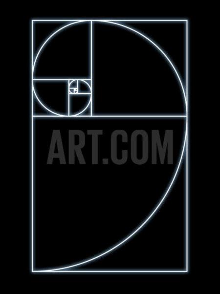 seymour-fibonacco-spiral-art