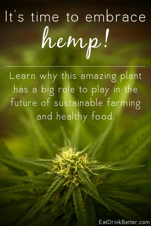 What is hemp, and how does it fit into the future of our food supply? Here's a primer about hemp production and the benefits of this amazing plant.