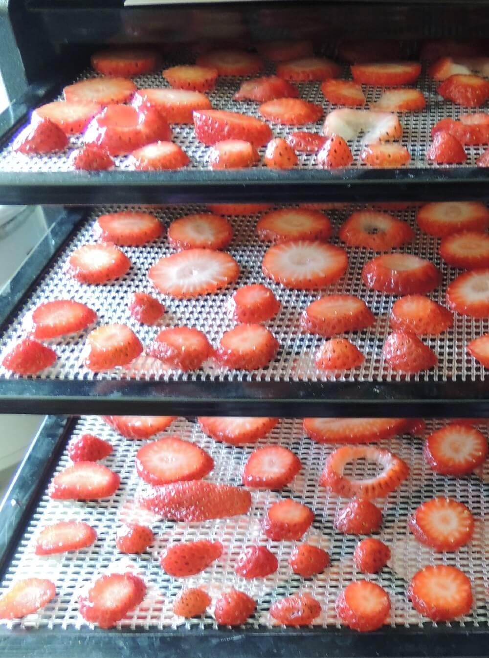 dehydrator recipes: strawberries on dehydrator tray