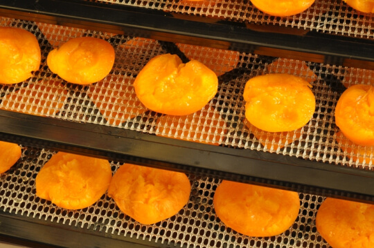dehydrator recipes: dehydrated apricots on a dehydrator tray