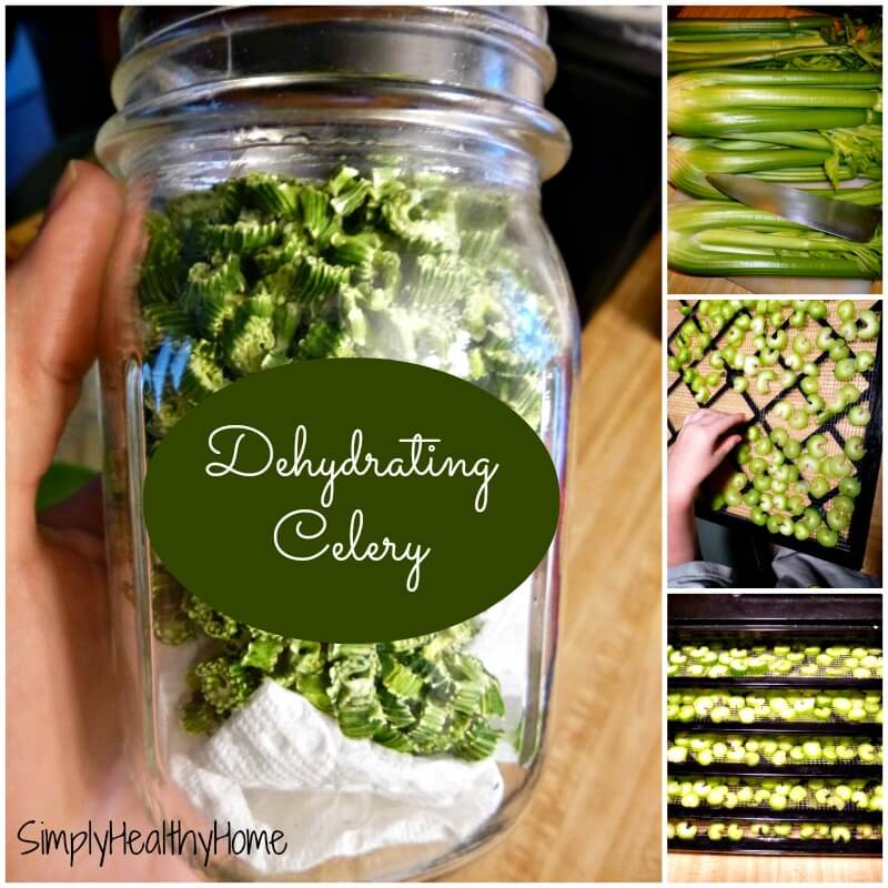 dehydrator recipes: celery