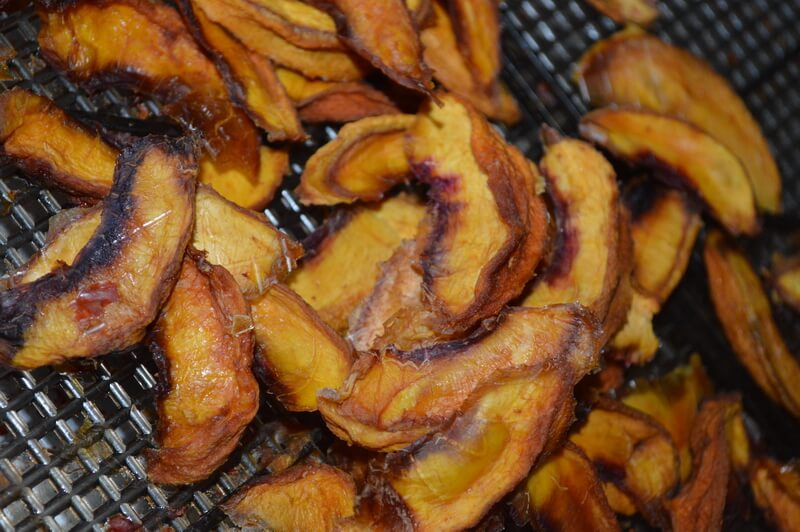 dehydrator recipes: peaches