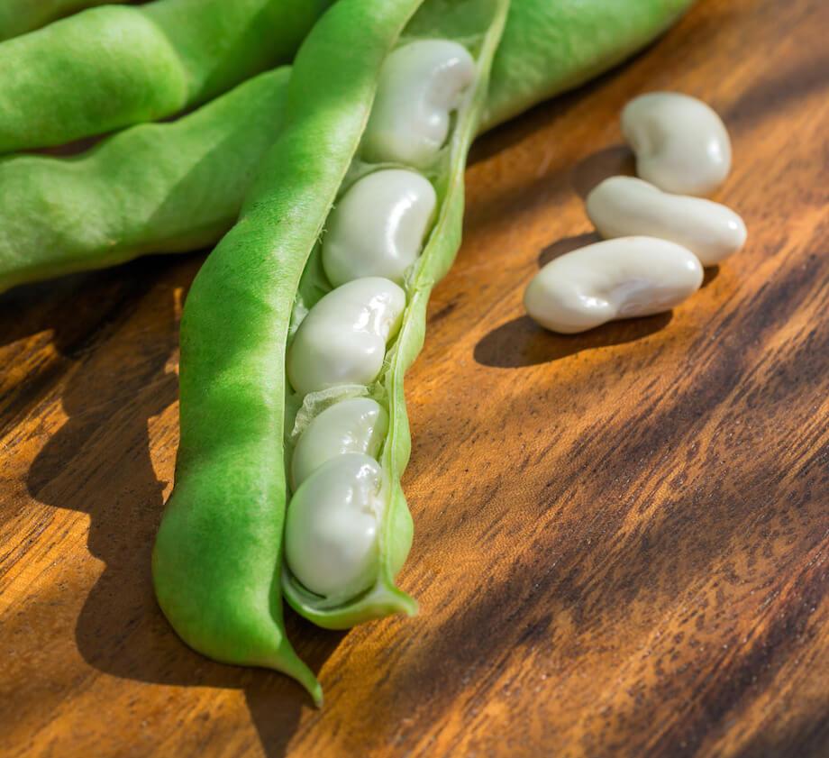 green-pod-white-beans