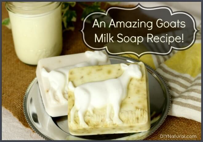 Milk Soap Recipes