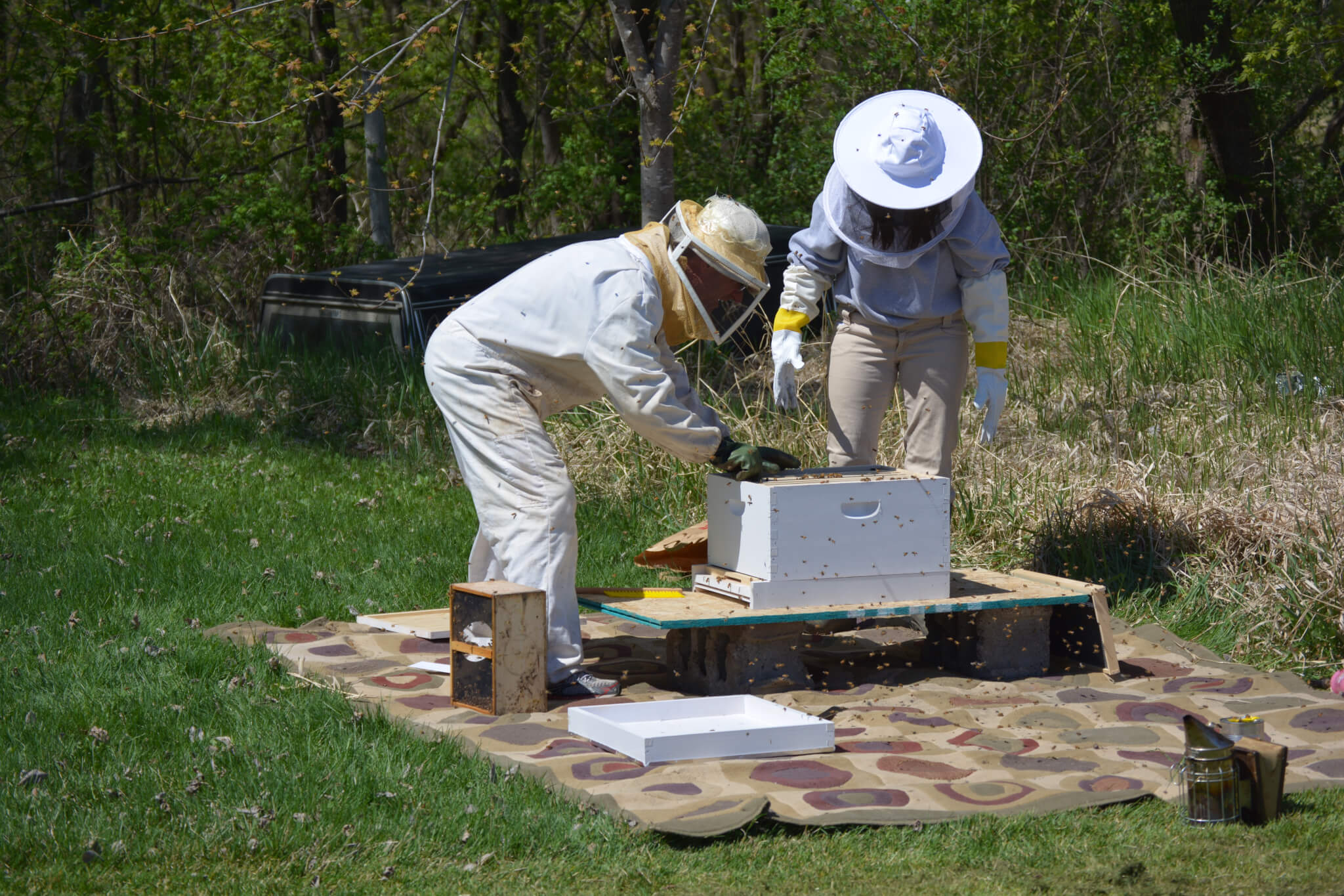 Installing The Beehive