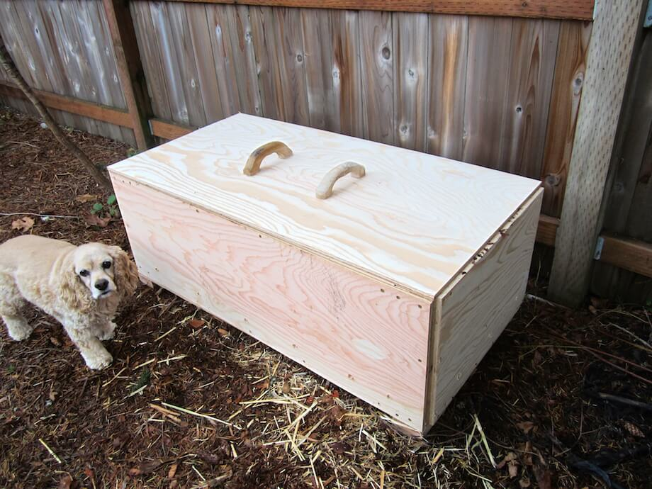 a dog hangs out by a worm bin