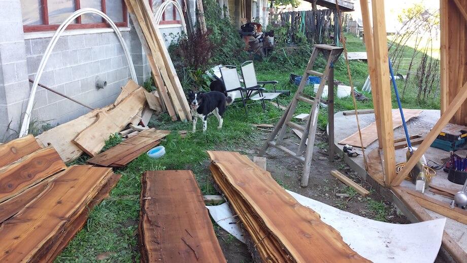 dog who likes DIY sauna building