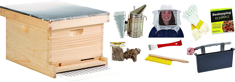 Similar Little Giant Beehive Kit on Amazon
