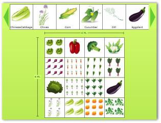 Vegetable Garden Online