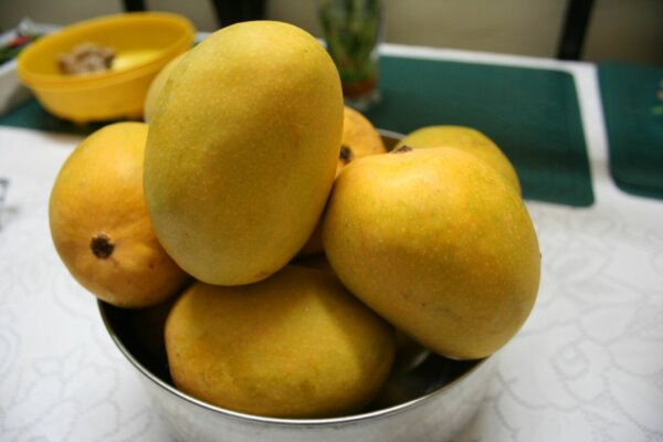 yellow-mango