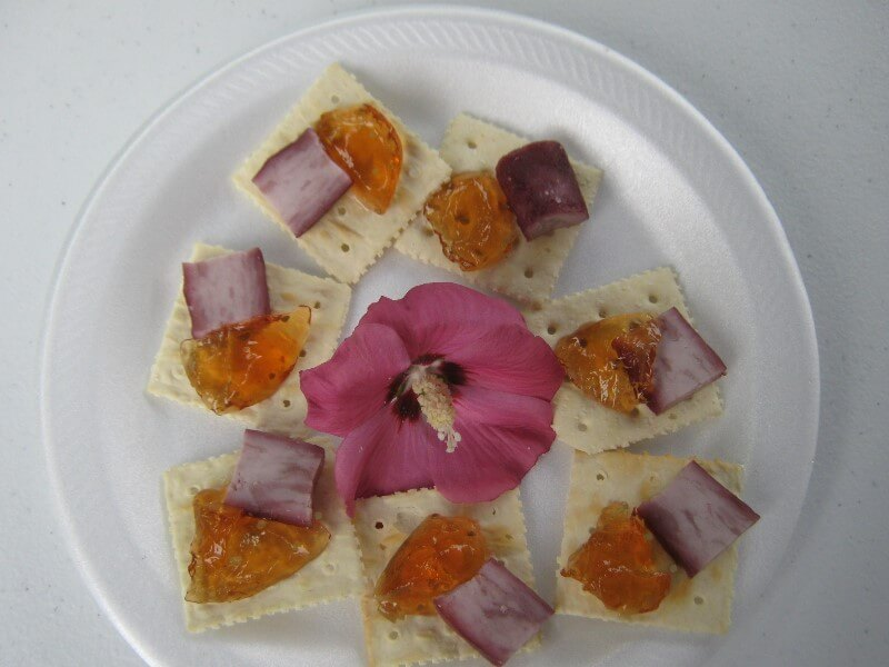 homemade goat cheese on crackers