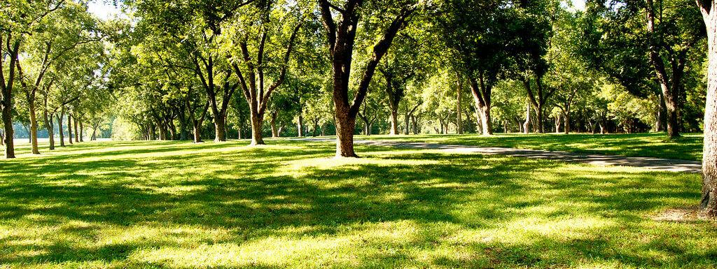 pecan grove richard bland college virginia