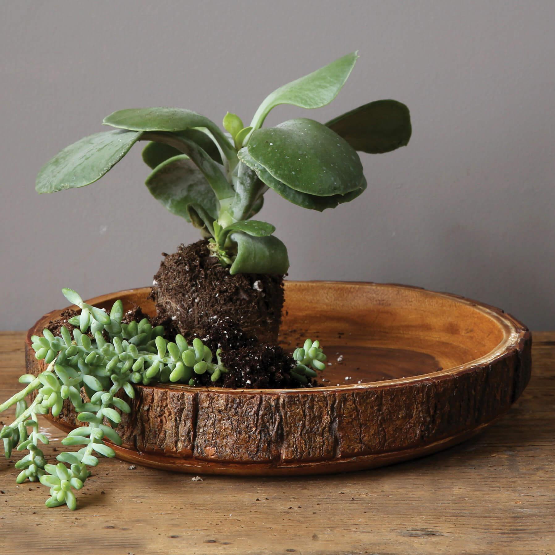 Round Acacia Wood Bowl
