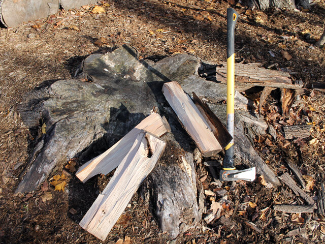 wood split over a stump