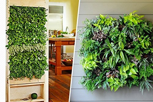 Vertical Garden Pot Invigorated living 4 pocket vertical garden planter insteading invigorated living 4 pocket vertical garden planter workwithnaturefo