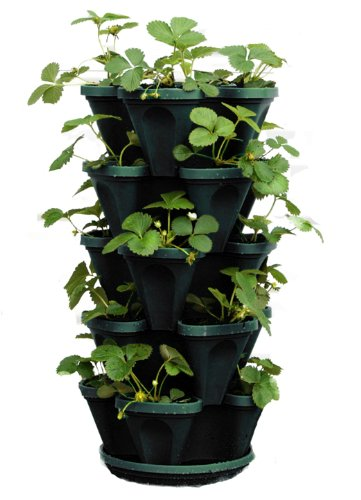 mr stacky 5 tier stackable planter insteading. Black Bedroom Furniture Sets. Home Design Ideas